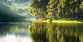 En France, quelles sont les ressources en eau ?