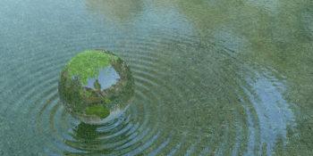 Journée mondiale de l'eau : La réponse est dans la nature