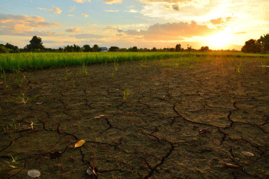 Réchauffement climatique - solutions