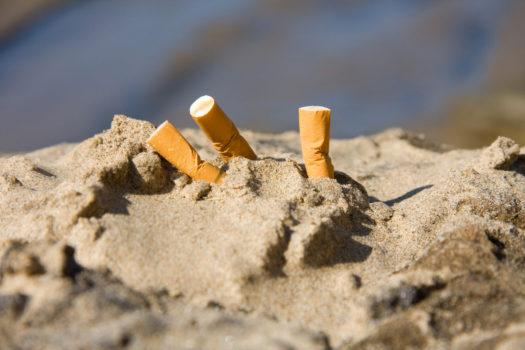 Mégots de cigarettes jetés dans la nature