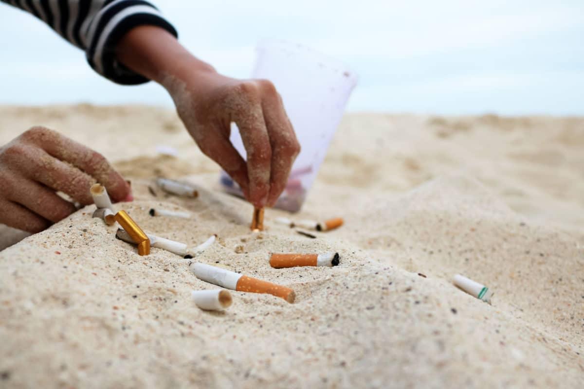 Mégots de cigarettes et eau