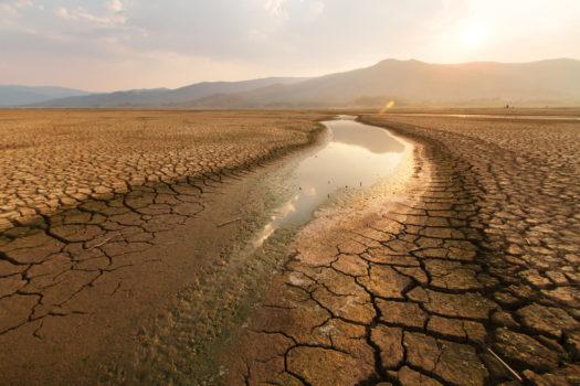 Comment les besoins en eau vont-ils évoluer dans le monde ?