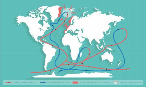Circulation thermohaline (source : Surfrider Foundation Europe)