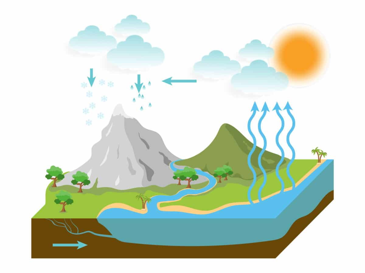 the water cycle illustration infographic. vector esp10